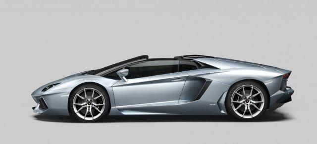 2013 Lamborghini Aventador LP 700-4 Roadster Picture 39