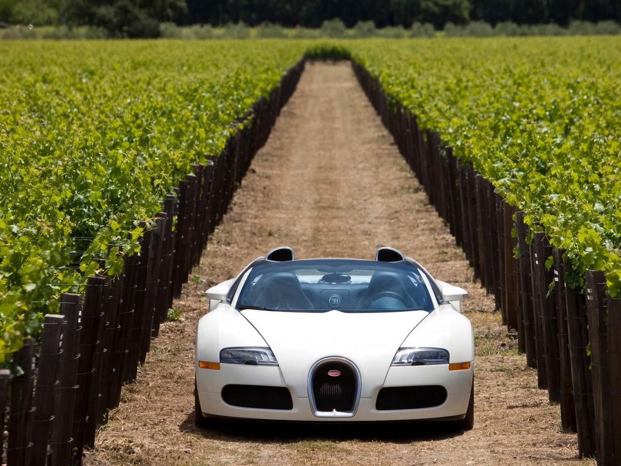 2010 Bugatti Veyron 16.4 Grand Sport in Napa Valley