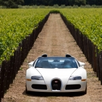 2010 Bugatti Veyron 16.4 Grand Sport in Napa Valley